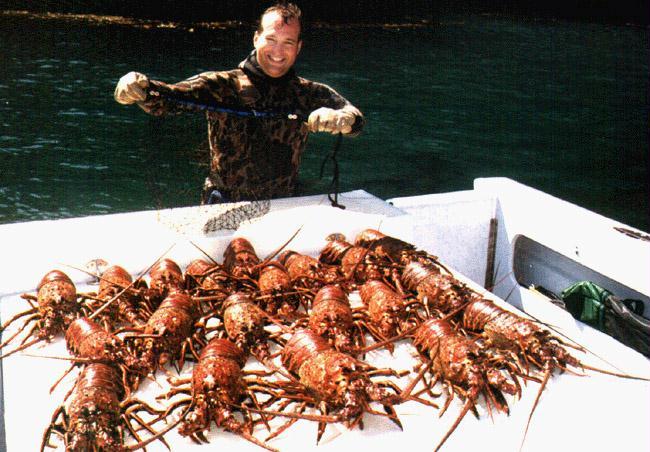Radon boats fishing scrapbook page 1 for Lobster fishing california